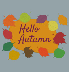 hello autumn calligraphy text on orange and gray vector image