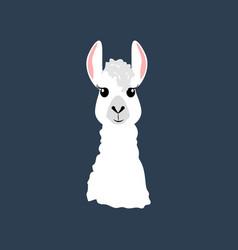 Llama head vector