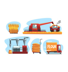 production flour and bread set industrial vector image