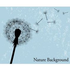 background with dandelion vector image