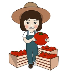 planter and tomatoes vector image