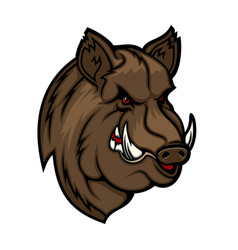 angry boar head mascot wild pig or hog icon vector image