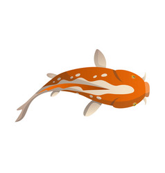 calmly floating fish koi fish vector image