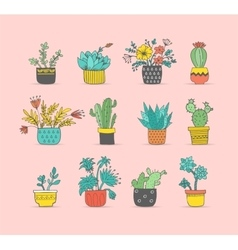 Cute hand drawn cactus set vector