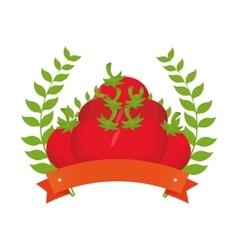 fresh tomato farm product vector image