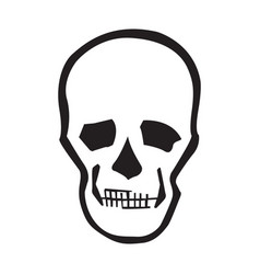 image of a human skull for design vector image
