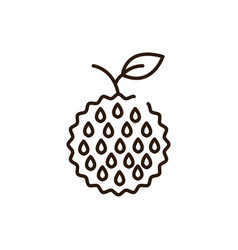 Isolated custard apple icon line design vector