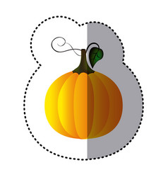 Sticker colorful pumpkin vegetable halloween icon vector