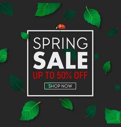 spring sale background banner with frame vector image
