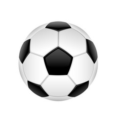 football ball isolated vector image