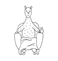 Monochrome line hand-drawn lama in the armchair vector