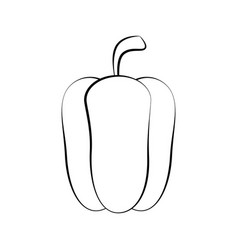 Pepper fresh vegetable vector