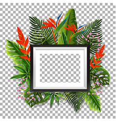 picture frame with bird of paradise in background vector image