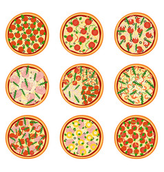 Set of appetizing pizzas vector
