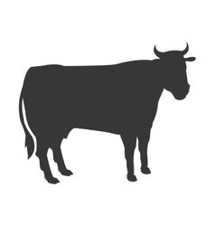 cow silhouette icon vector image vector image