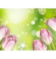 Beautiful pink tulips EPS 10 vector image vector image