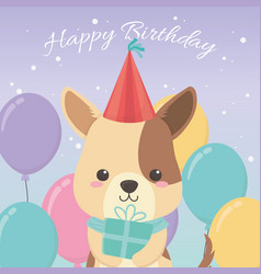 birthday card with little dog character vector image