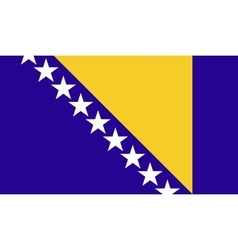 Bosnia and Herzegovina flag image vector image