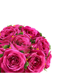 Bouquet of roses flowers festive congratulation vector