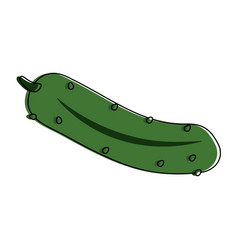 Cucumber vegetable icon image vector