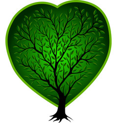 green tree with heart vector image