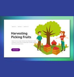 harvesting picking fruits horizontal banner vector image