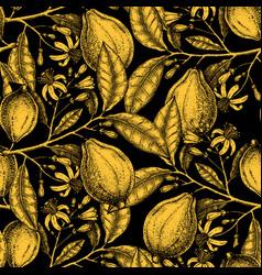 ink hand drawn citrus fruits backdrop gold foil vector image