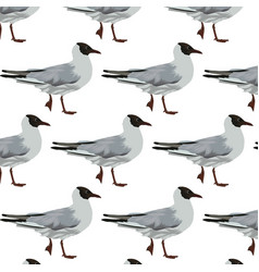 pattern with hand drawn seagulls vector image