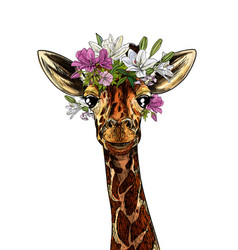 Portrait cute giraffe with flowers on his head vector