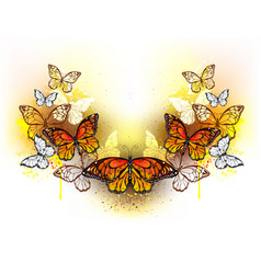 Symmetrical pattern of butterflies monarchs vector