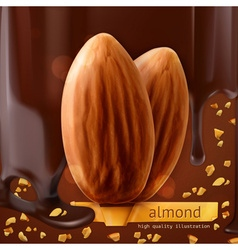 Almonds background vector