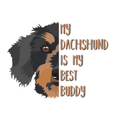 Best friend dachshund vector