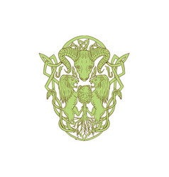 Bighorn sheep lion tree coat arms celtic knot vector