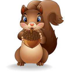cartoon funny squirrel holding pinecone vector image