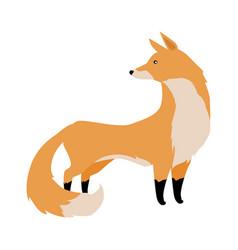 Fox in flat design vector
