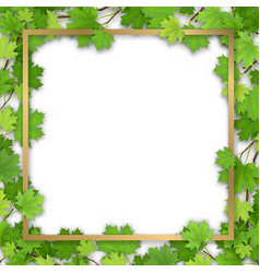 Golden frame in maple foliage vector