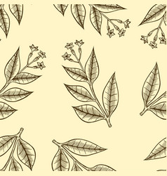 Pattern herbs and flowers vector