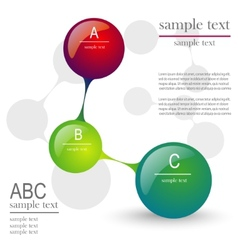 infographics layout vector image