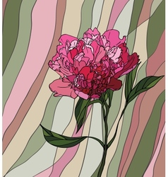 peony stained glass window vector image vector image