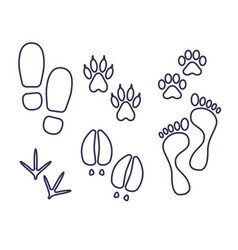 traces of human and amimals outline tracks vector image
