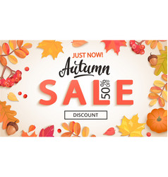 Autumn sale just now banner with discount vector