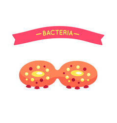 bacteria poster and virus vector image