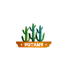 Botany cactus in a pot logo for printing vector