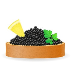 caviar 08 vector image