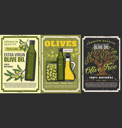 Olive oil green fuits and tree vegetarian food vector