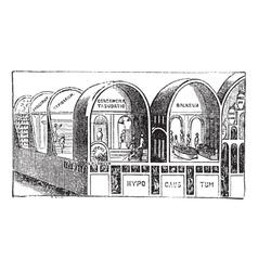 Titus Baths vintage engraving vector image