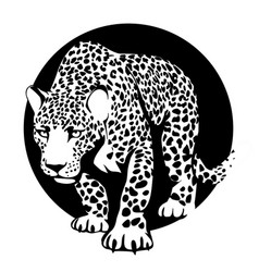 black and white silhouette of a leopard in a black vector image
