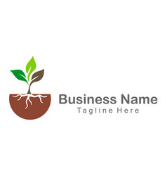 plant green leaf seed company logo vector image