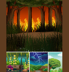 Four different natural disasters scenes forest vector