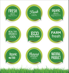 Modern ecology sticker and tag green collection vector